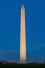 Wall Mural - Washington Monument in Washington DC