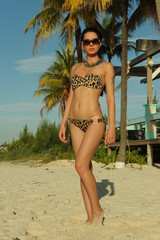 Young brunette in animal print bikini posing on the beach