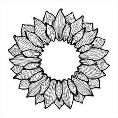 Sunflower ink sketch frame vector