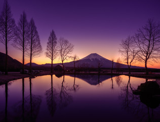 Wall Mural - Fuji Reflect on a pond