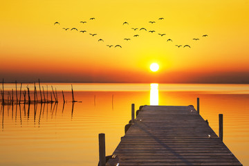 amanece un dia dorado en el mar