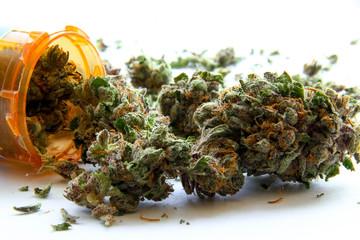 Medical Marijuana D
