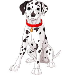 Canvas Prints Fairytale World Cute Dalmatian Dog