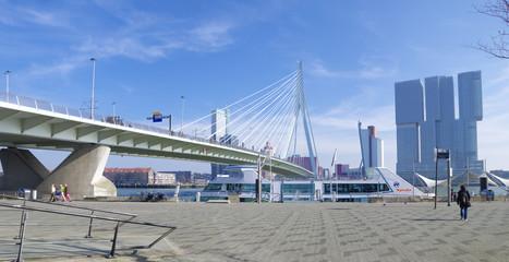 Photo sur Aluminium Rotterdam erasmus bridge Rotterdam