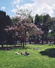 Staande foto Los Angeles peole resting on the grass