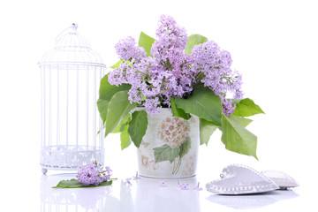 Fototapeta Lilac flowers obraz