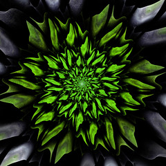 Wall Mural - Toxic green floral background