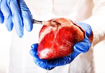 cardiac surgeon, abstract