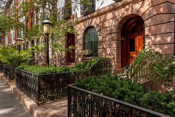 Fotomurales - Chelsea townhouses and front yards, NYC