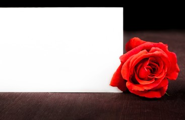red rose near blank gift card for text on old wood background