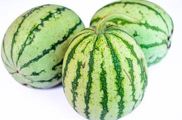 Three Striped Watermelon