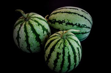 Melon in the Dark