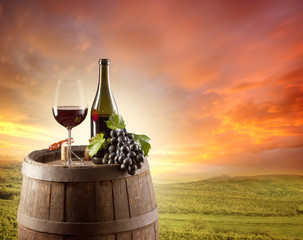 Red wine still life with vineyard on backgorund
