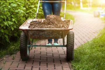 photo of garden wheelbarrow with earth at sunny day