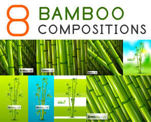Set of vector nature bamboo designs