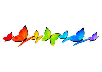 Rainbow butterflies border for Your design