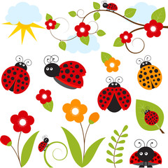 Ladybug Set