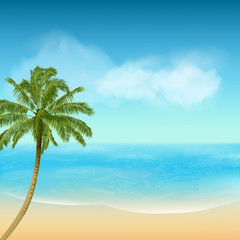 summer sea and palm tree background