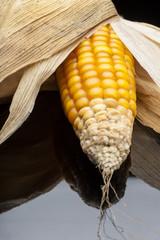 Corn, cob, yellow, decoration, still life, elegance