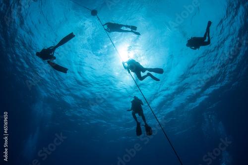 Wall mural Scuba Diving