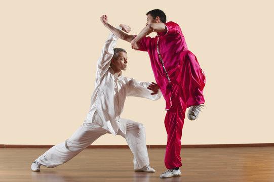 Kung Fu,Changquan,Duilian,Lange Faust Style,zwei Männer,die Kung- Fu-Bewegungen
