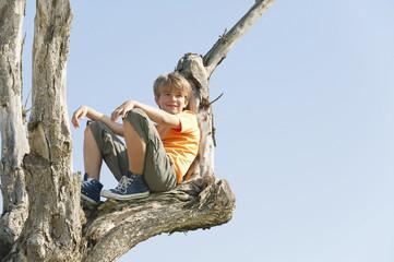 Spanien,Mallorca,Boy (8-9) sitzen im Baum Wall mural
