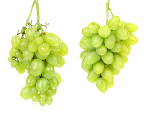 Bunch of green grapes.