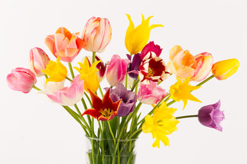 colorful bouquet of tulips of different forms