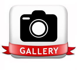 Image result for Gallery button