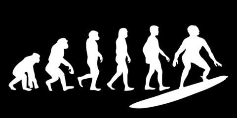Vom Affen zum (Menschen) Surfer