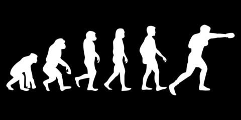 Vom Affen zum (Menschen) Boxer