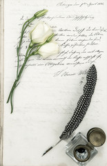 old letter, flower and antique feather pen