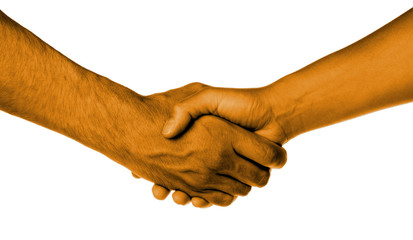 Shaking hands of two people, male and female