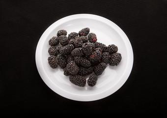 Blackberries on White Plate on Black Background