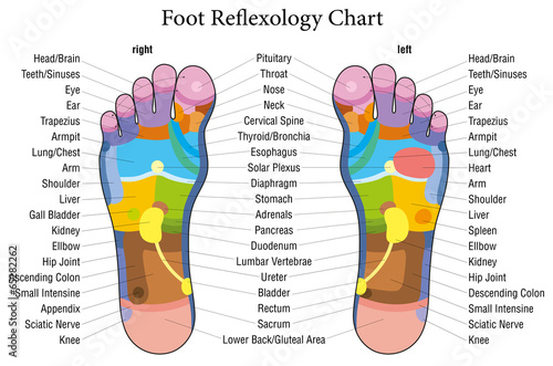 Foot reflexology chart german description\