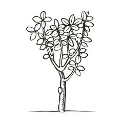 woodcut print tree