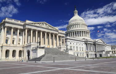 US Capitol, Washingtn DC, USA