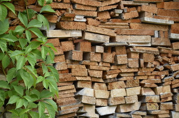 Holzscheitel