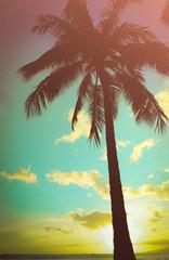 Retro Styled Hawaiian Palm Tree