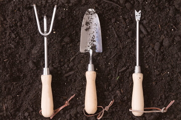 Set of small wood and steel garden implements