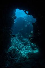 Wall Mural - Underwater Cavern 2