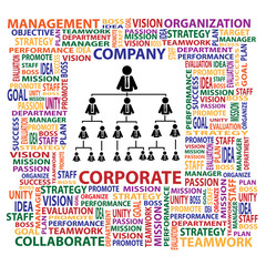 Organization and corporate structure in company