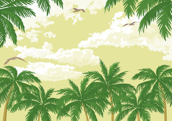 Tropical landscape, palms, seagulls and sky