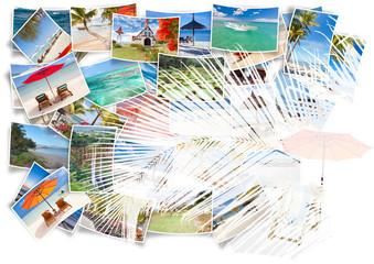 île Maurice en photos sous palme de cocotier