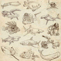 Underwater 1 - hand drawings on old paper