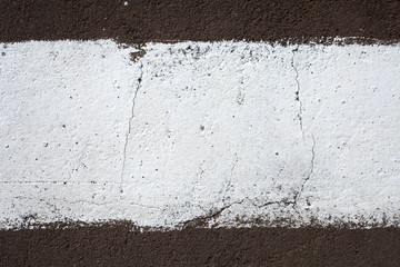strip of white paint on the pavement