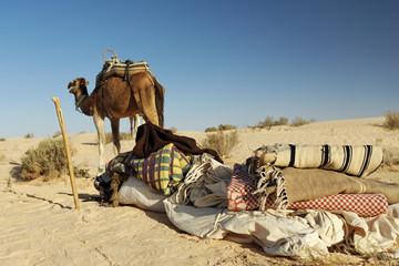Matériel de bivouac de bédouins dans le désert