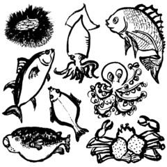 海祭り 海鮮 回転寿司 広告イラスト