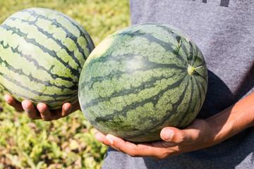 Watermelon on hand