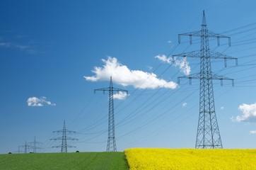 Nachwachsende Rohstoffe und Stromleitungen